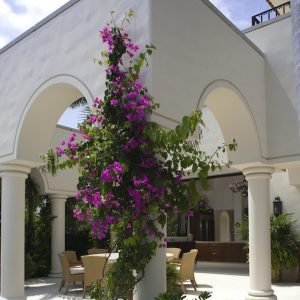 Stone-Contractors-Villa-Cielo-del-Mar-2016-06-300x300